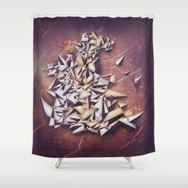 Ametrine Shower Curtain