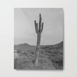 Saguaro B&W // Desert Landscape Photography Arizona Cactus Black and White Vintage Southwestern Vibe Metal Print