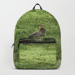 Baby rabbit enjoying sunshine Backpack