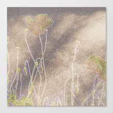 Abstract coquelicot Canvas Print