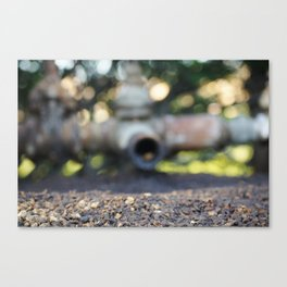 Spill What? Canvas Print