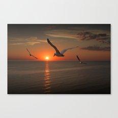 Gulls Flying towards the Sun over Lake Michigan Canvas Print