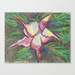 Brugmansia 2 Canvas Print