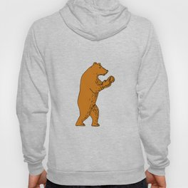 Brown Bear Boxing Stance Drawing Hoody