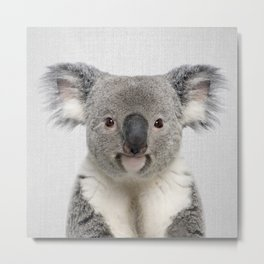 Koala 2 - Colorful Metal Print