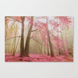 atmospheric autumn Canvas Print
