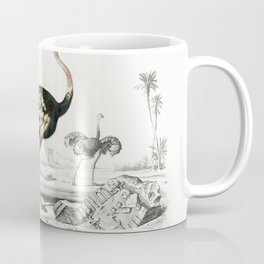 Struthio (Autruche de lancien continent) illustrated by Charles Dessalines D Orbigny (1806-1876) Coffee Mug