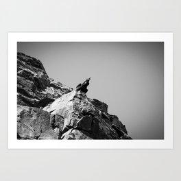 Raven Calling Art Print