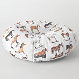 Horse Breeds Of The World Floor Pillow