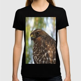 Young Red-Shouldered Hawk in a Desert Willow T-shirt