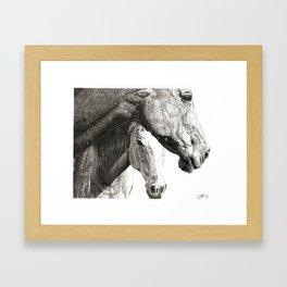 Equines Framed Art Print