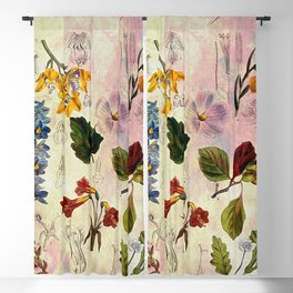 Botanical Study #1, Vintage Botanical Illustration Collage Blackout Curtain