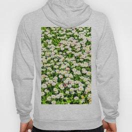 Field of daisy flowers Hoody