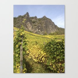 Rhineland Vineyards Canvas Print