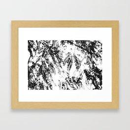 Leaves imprinted on the sky Framed Art Print