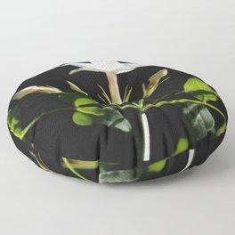 Close Up Of Jasminum Officinale Floor Pillow