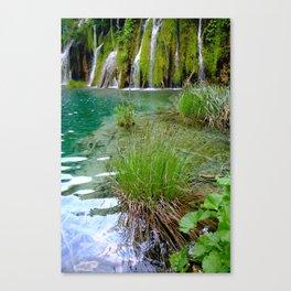 A Pond Canvas Print