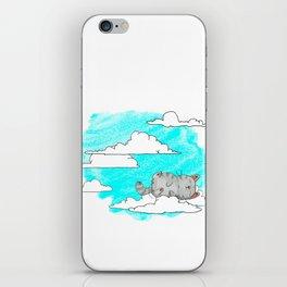 Sky Cat iPhone Skin