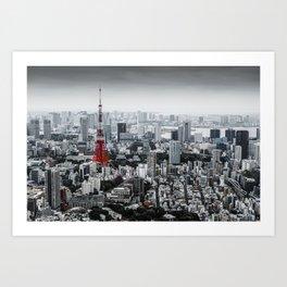Cinereous City Art Print
