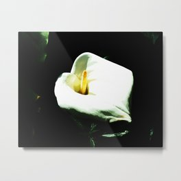 Death Lilly Metal Print