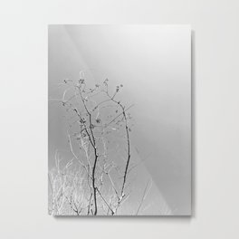Nature in The City Metal Print
