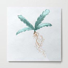 Nirnroot Botanical Illustration Metal Print