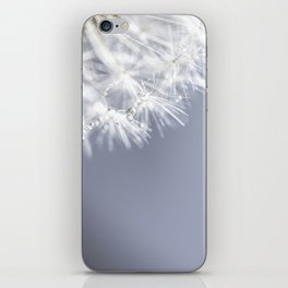 Sparkling dandelion with droplets - Flower water iPhone Skin