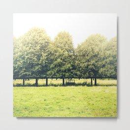 Tree Row Metal Print