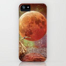 Belle de jour iPhone Case