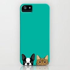 Boston Terrier & Tabby iPhone (5, 5s) Slim Case