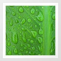 summer raindrops Art Print