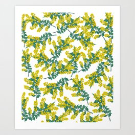 Australian Wattle Art Print