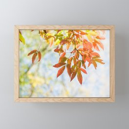 Feels like autumn Framed Mini Art Print