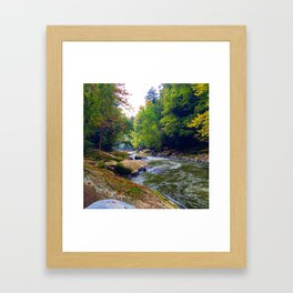 Fall Water Framed Art Print