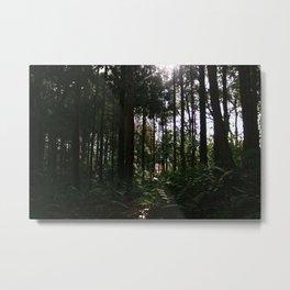 forest with hidden toori gate, fushimi inari  Metal Print