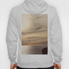 Midnight in Iceland Hoody