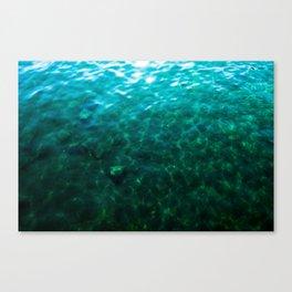 Dioptase Deeps Canvas Print