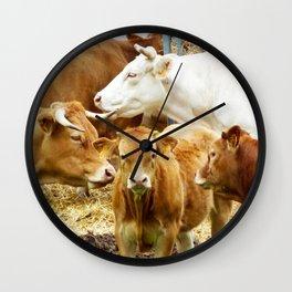 Cows, Morvan-France Wall Clock