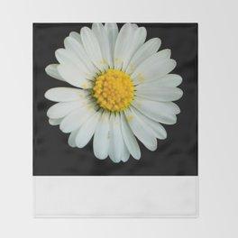 White daisy Throw Blanket
