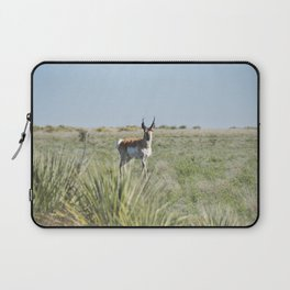 Pronghorn Antelope Laptop Sleeve