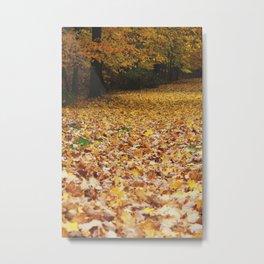 Autumn in Wooster part 2 Metal Print