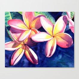 Plumeria Garden 3 Canvas Print
