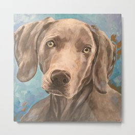 Weimaraner - by Joan Carver Metal Print