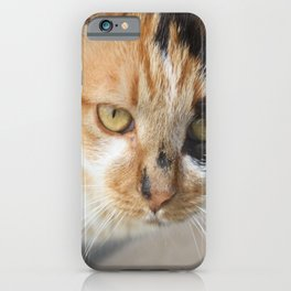 Orange Black and White Tricolor Cat iPhone Case