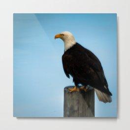 The eye of the eagle Metal Print