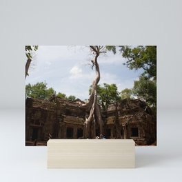 Ancient trees and Ancient Stories Mini Art Print