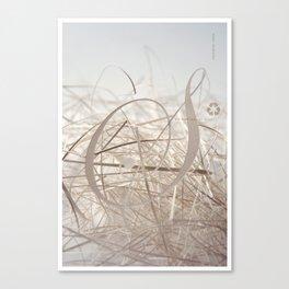 Sensual Scrap Canvas Print