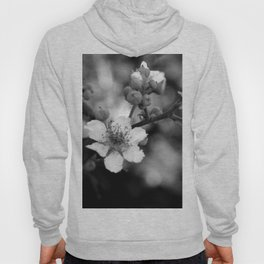 Blackberry Flower Hoody