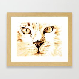 Cat with an attitude Framed Art Print