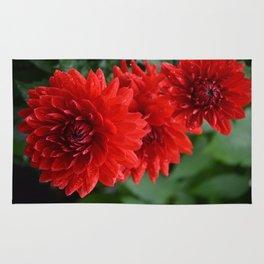 Fresh Rain Drops - Red Dahlia Rug